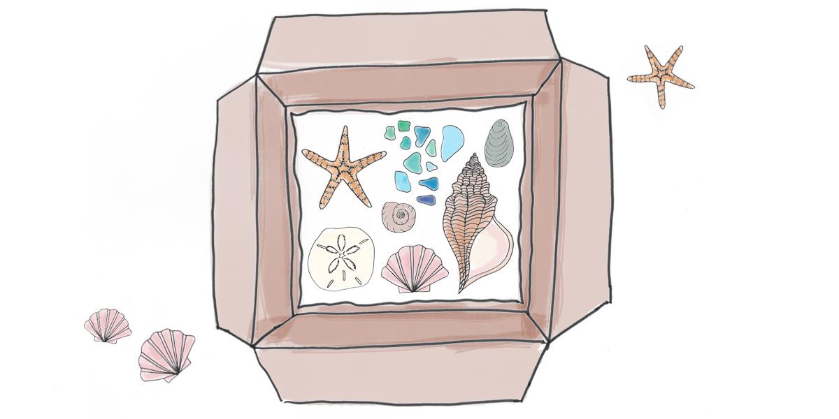 Whats-Your-Start-Up-Seashells-Box-Man-Repeller