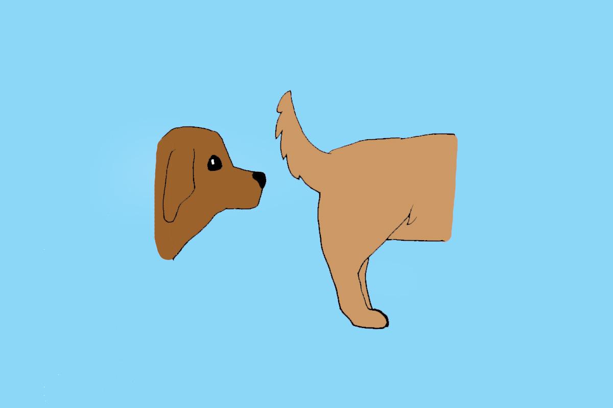 Dog-Etiquette-Man-Repeller-8