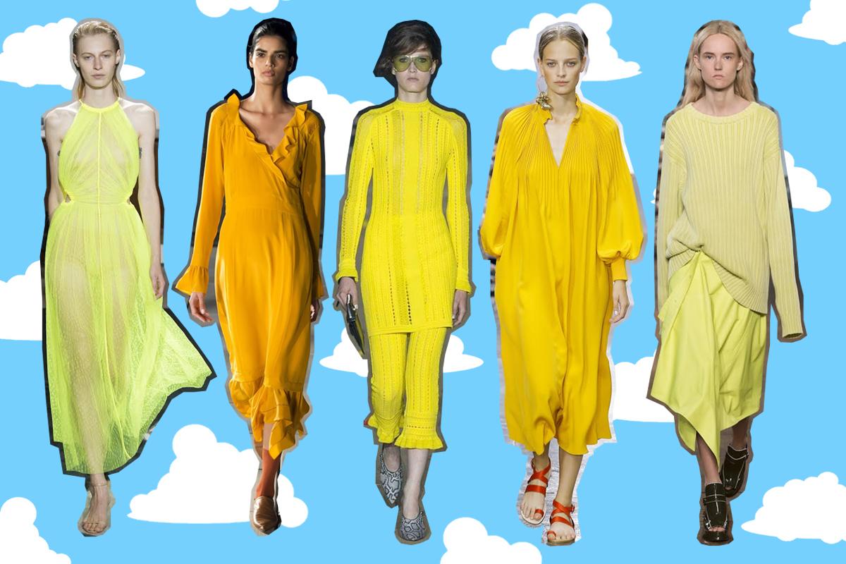 Yellow saffron