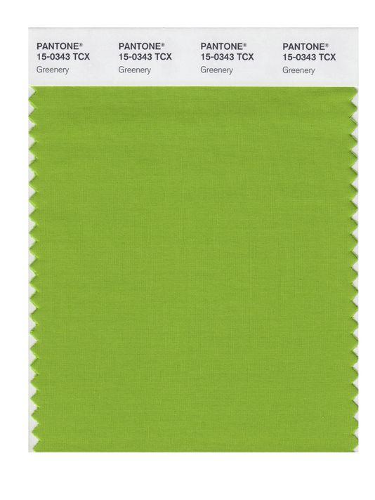 636167815601026490-ap-pantone-color-of-the-year