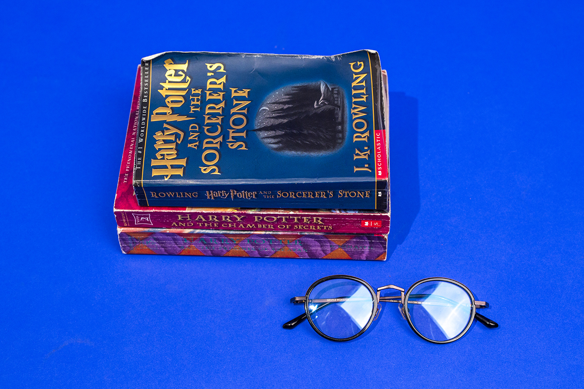 Harry Potter Fan Man Repeller-34
