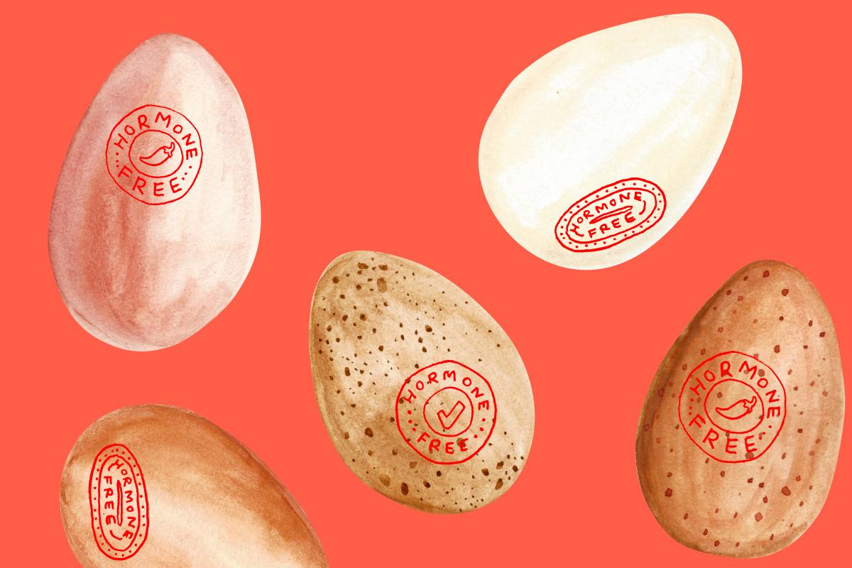 No-Condoms-No-Hormones-No-Babies-A-Guide-to-Natural-Family-Planning-Man-Repeller-4