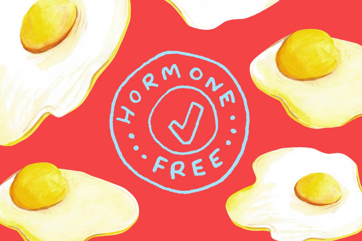 No-Condoms-No-Hormones-No-Babies-A-Guide-to-Natural-Family-Planning-Man-Repeller-Feature