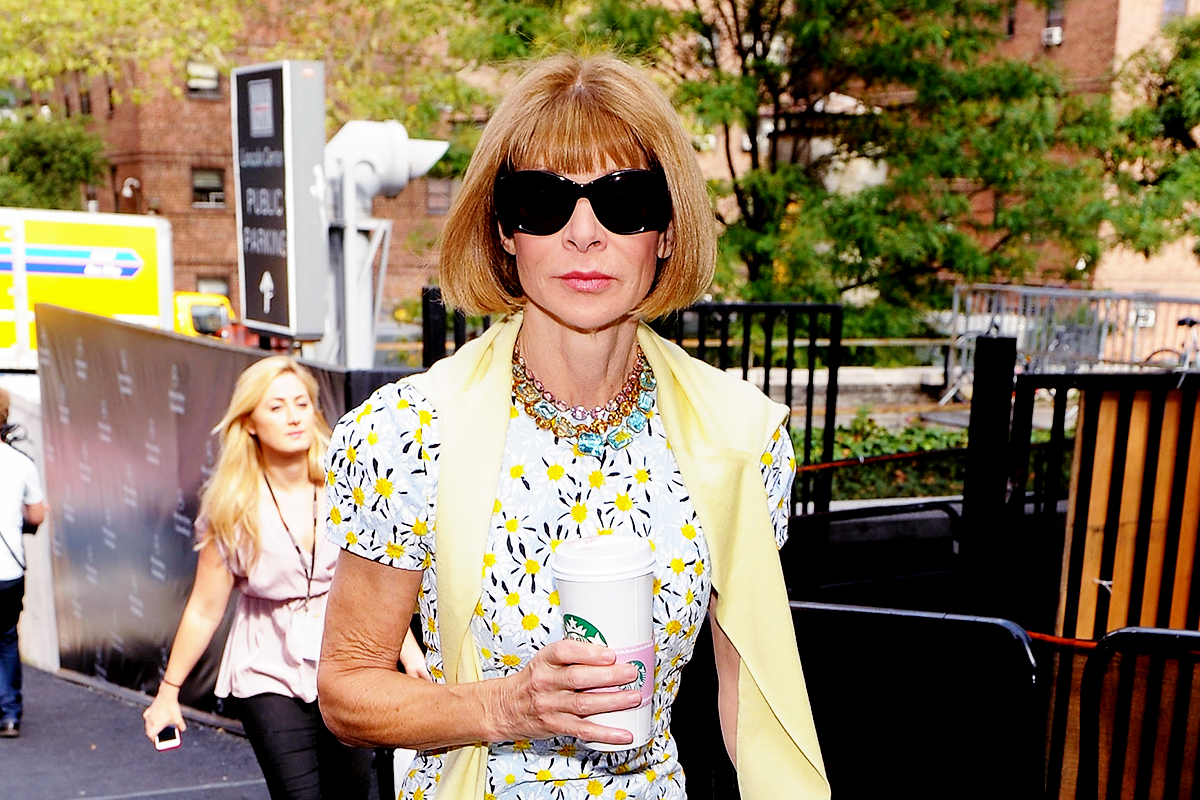 PARIS, FRANCE - MARCH 07: Anna Wintour is seen arriving at Louis Vuitton fashion show during the Paris Fashion Week Womenswear Fall/Winter 2017/2018 on March 7, 2017 in Paris, France. (Photo by Jacopo Raule/GC Images)